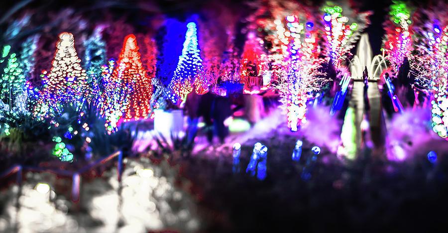 Christmas Photograph - Christmas Light Bokeh At Daniel Stowe Gardens Belmont North Caro by Alex Grichenko