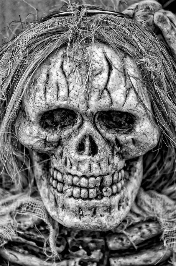 Halloween Decoration Photograph