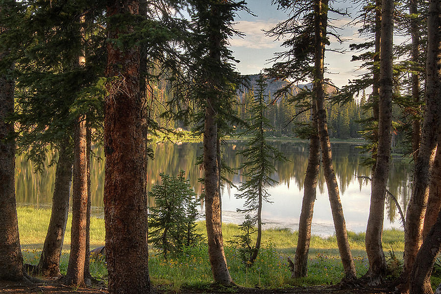 Uinta Mountains, Utah Photograph