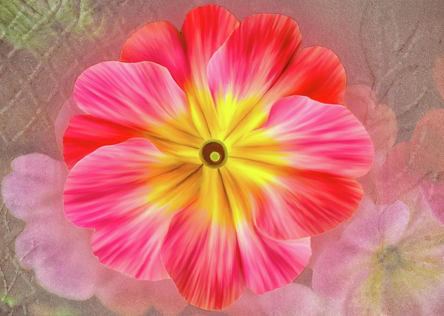 Pink Primrose #2 by Bill Johnson