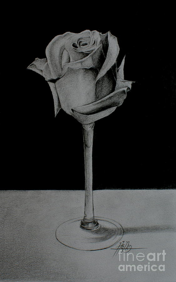 Rose Drawing - No Title by Marek Halko