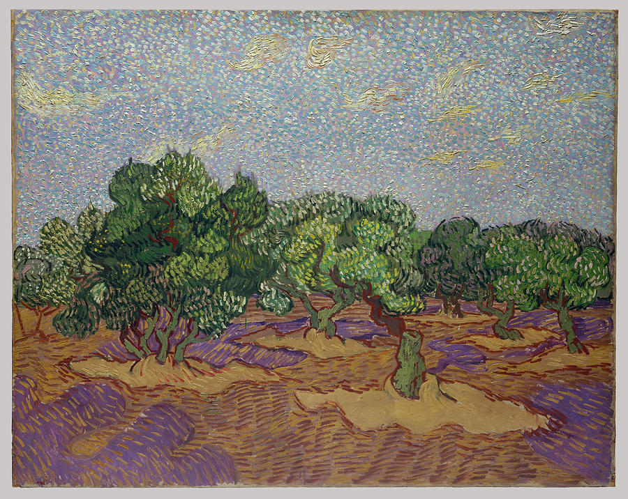 Olive Trees Painting - Olive Trees by Vincent van Gogh