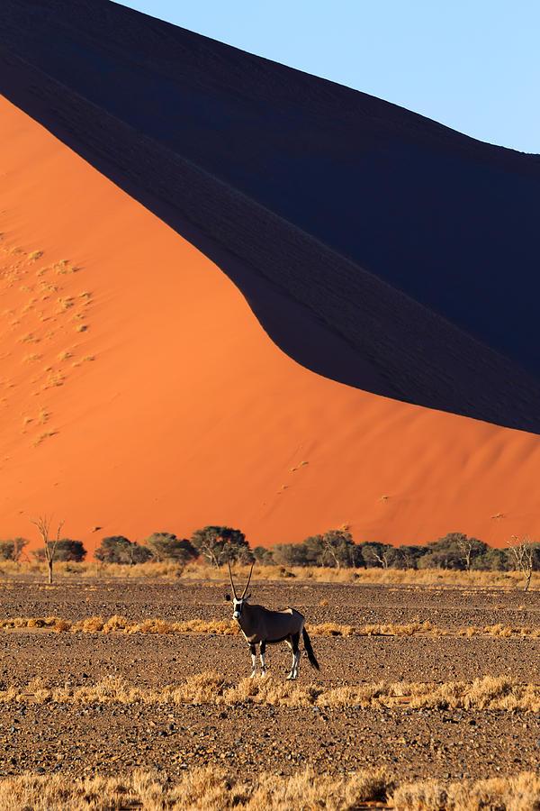 Kalahari Photograph - Sossusvlei Dunes by Davide Guidolin