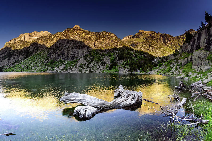 Scenery Photograph - Colomers by Tilyo Rusev