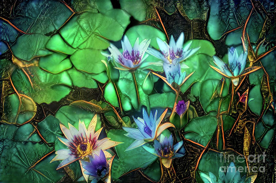 Aquatic Plant Digital Art - Jeweled Water Lilies by Amy Cicconi