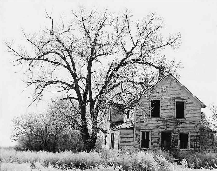 1930s Abandoned Farm House Near Aberdeen South Dakota 1965  Photograph by David Lee Guss
