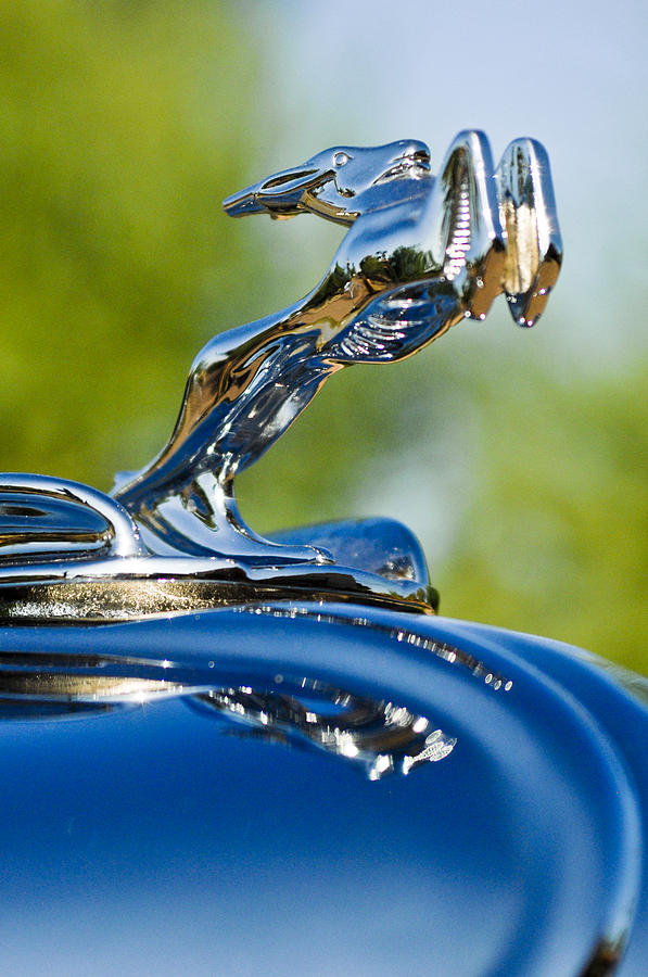 Hood Ornament Photograph - 1931 Chrysler Cn Roadster Hood Ornament 2 by Jill Reger