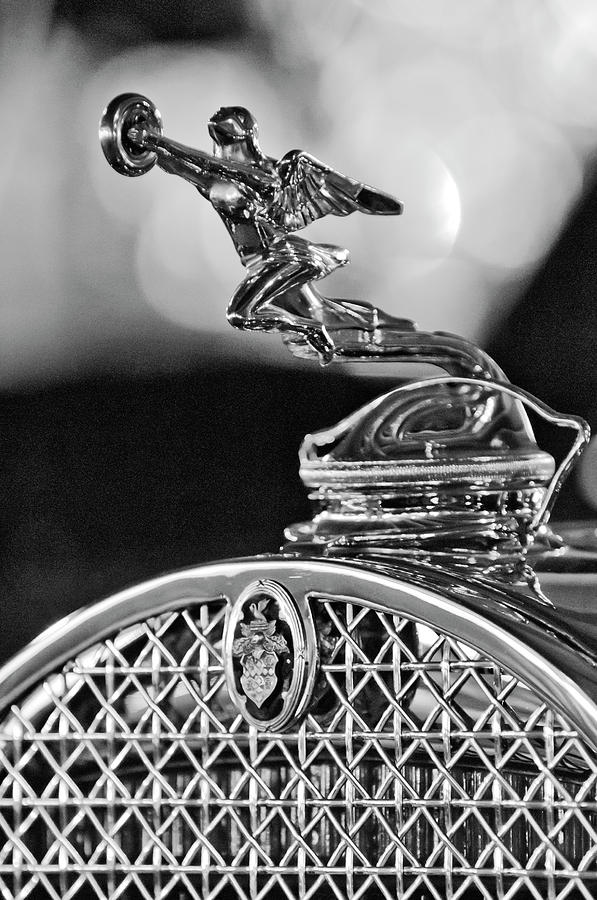 Black And White Photograph - 1931 Packard Convertible Victoria Hood Ornament 2 by Jill Reger