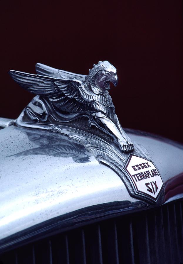 1933 Photograph - 1933 Hudson Essex Terraplane Griffin Hood Ornament by Carol Leigh
