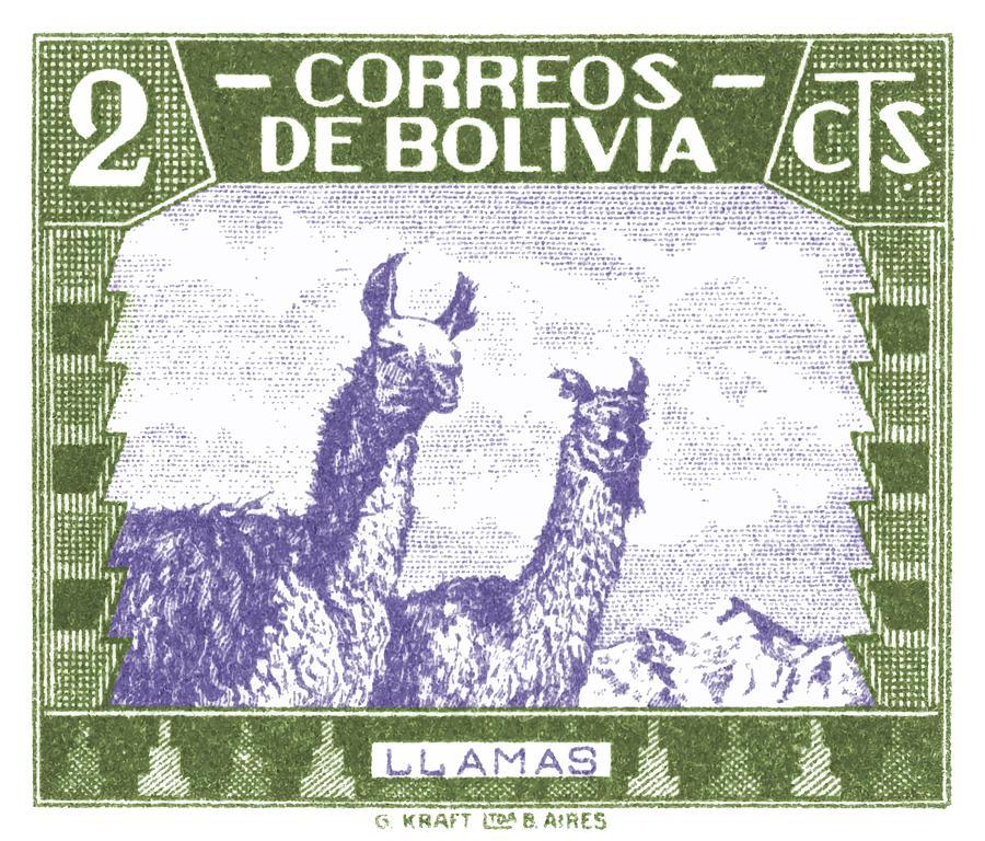 Bolivia Digital Art - 1939 Bolivia Llamas Postage Stamp by Retro Graphics