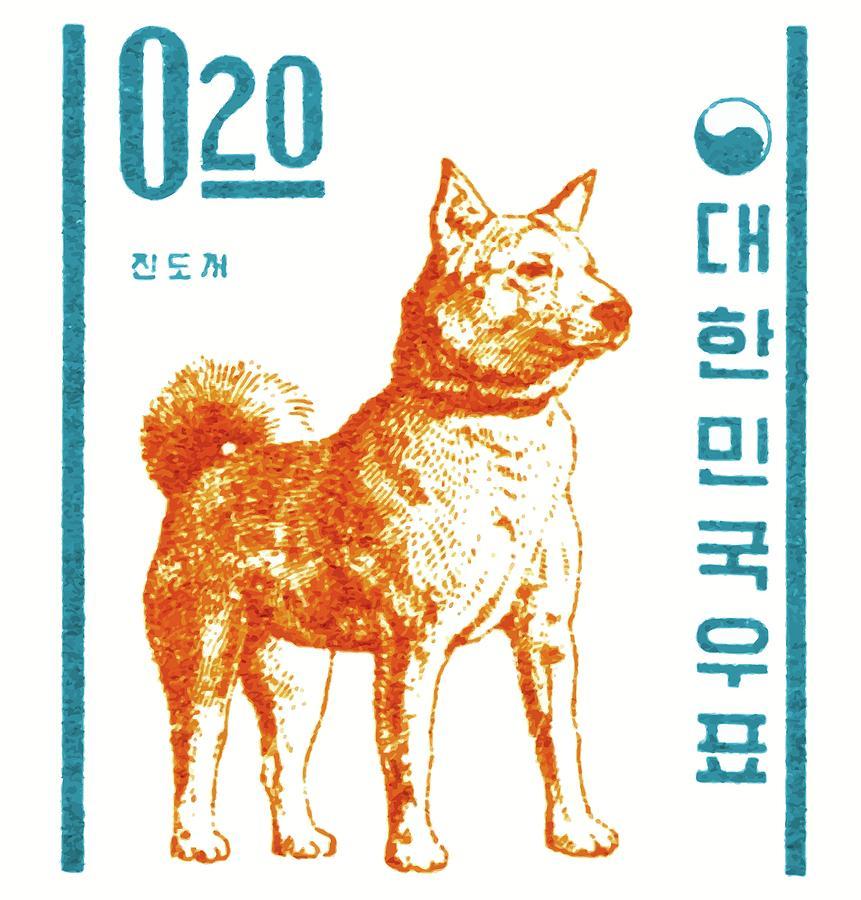 Jindo Digital Art - 1962 Korea Jindo Dog Postage Stamp by Retro Graphics