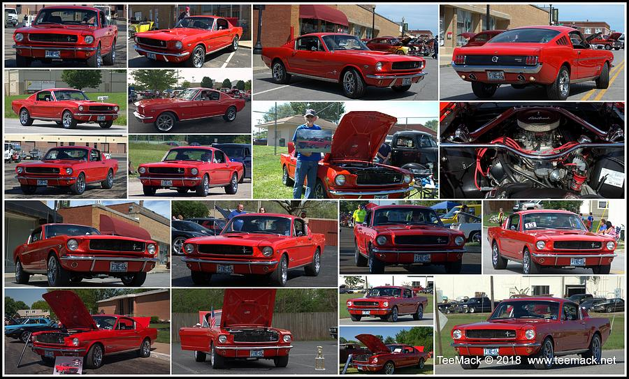 1965 Mustang Fastback Collage by Tim McCullough