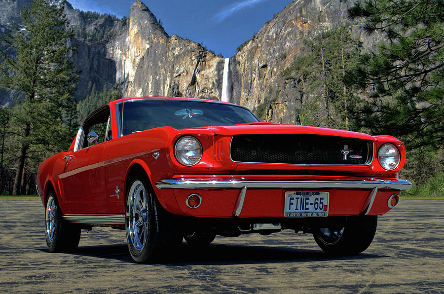 1965 Mustang Fastback by Tim McCullough