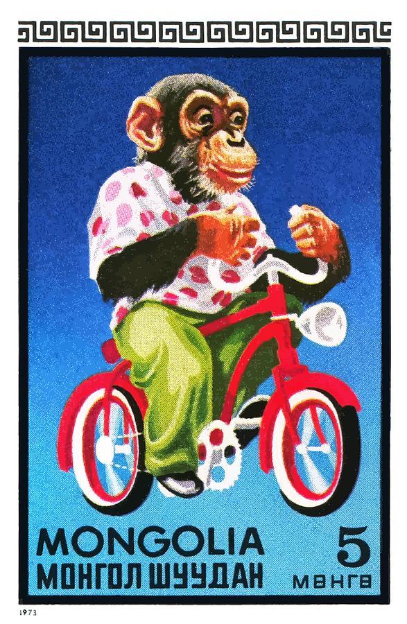 Mongolia Digital Art - 1973 Mongolia Chimpanzee Riding Bicycle Postage Stamp by Retro Graphics