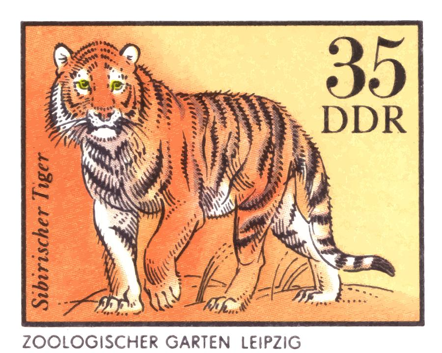 Tiger Digital Art - 1975 East Germany Zoo Tiger Postage Stamp by Retro Graphics