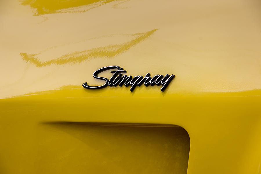 1976 Photograph - 1976 Corvette Stingray Side Emblem by Robert Kinser