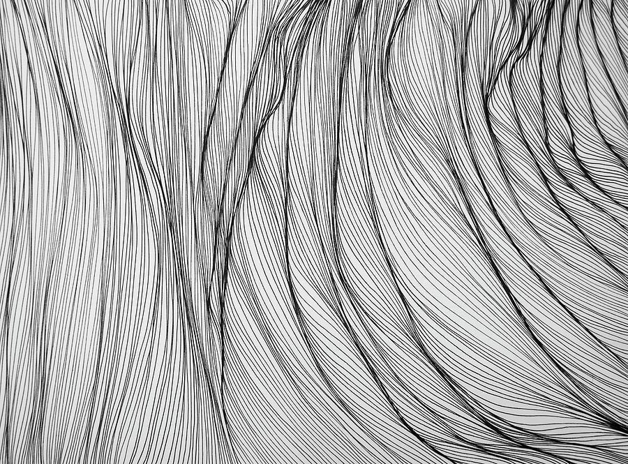 Lines Drawing - 1S1 by Kris Freeman