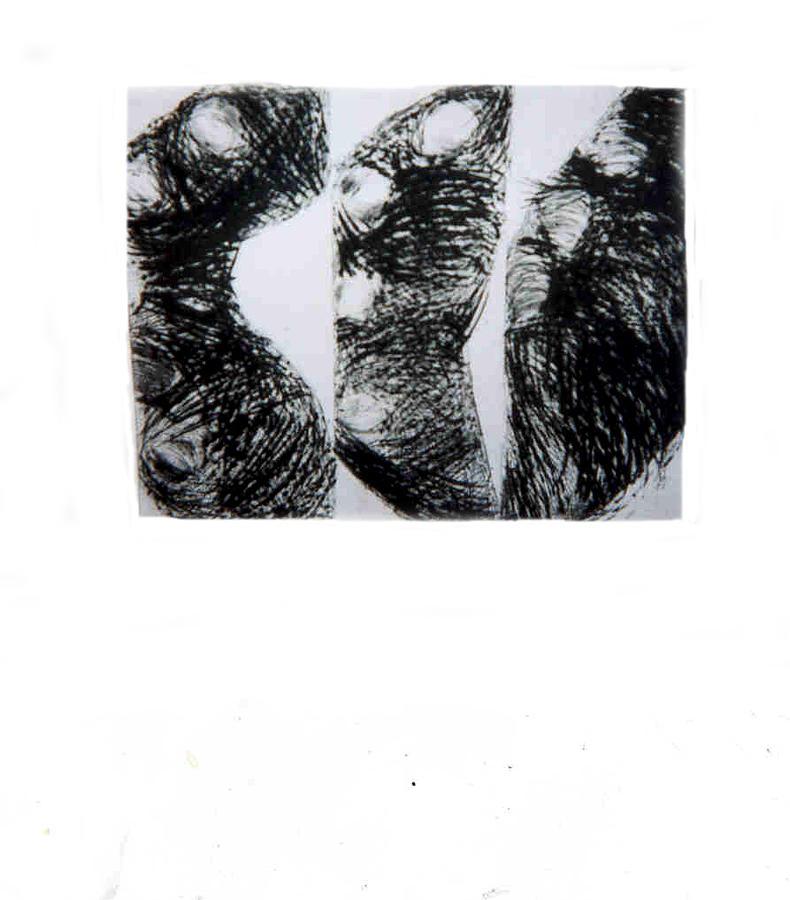 Forms Print - No Title by Anna Klardie