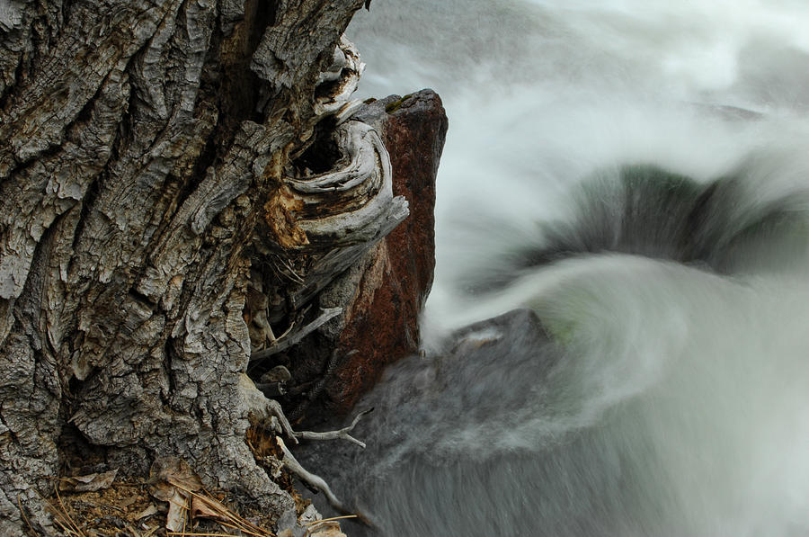 Water Photograph - Around The Bend by Donna Blackhall
