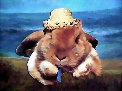 Rabbits Mixed Media - Beach Bunny by Brenda Garacci