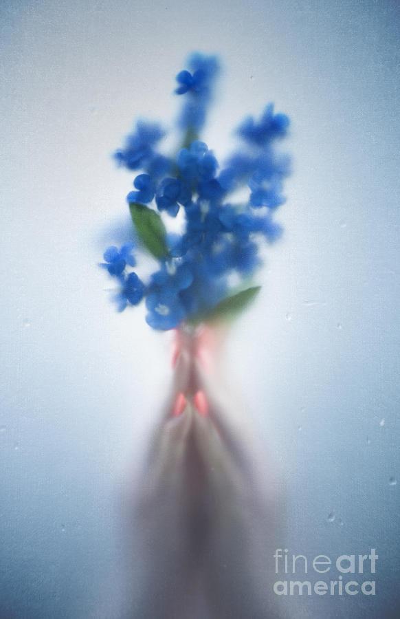 Beautiful Photograph - Blue Dream by Svetlana Sewell