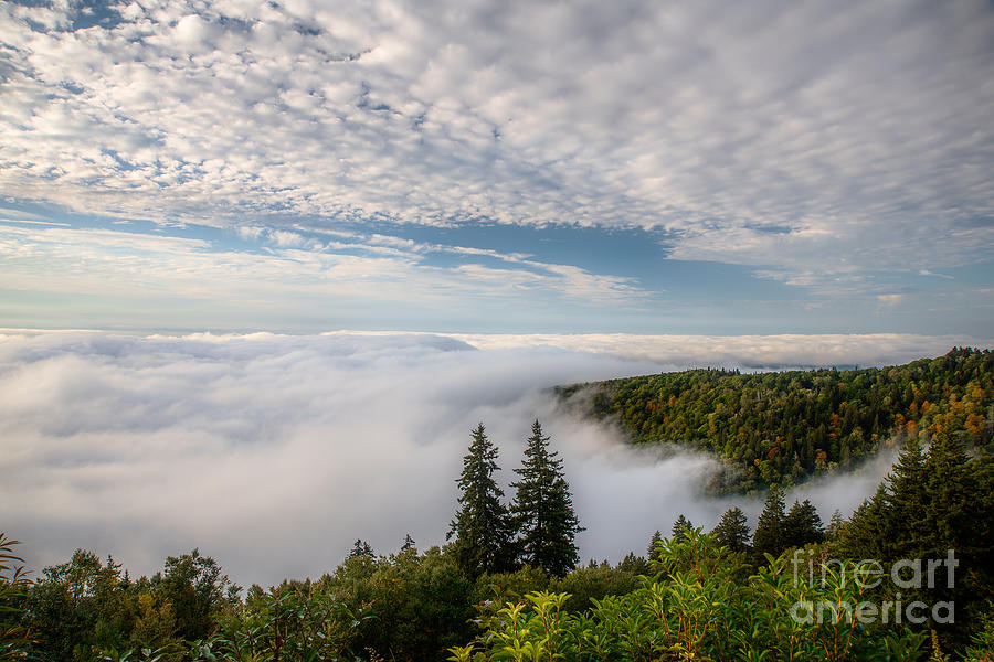 Blue Ridge Parkway Photograph - Blue Ridge Parkway. by Itai Minovitz