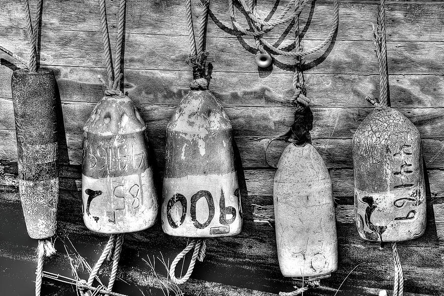 Buoys by Dawn J Benko