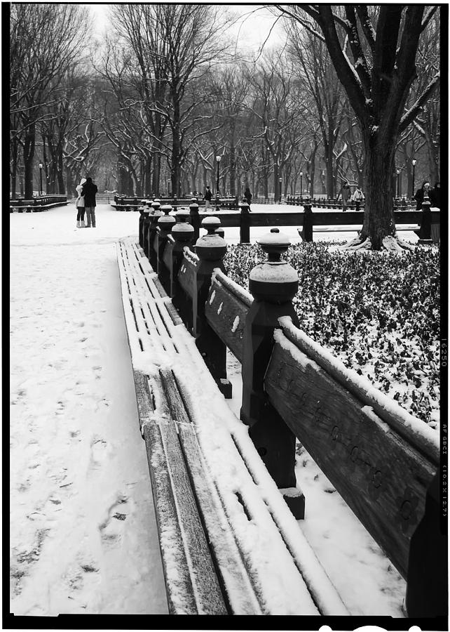 Ny Photograph - Central Park 8 by Wayne Gill
