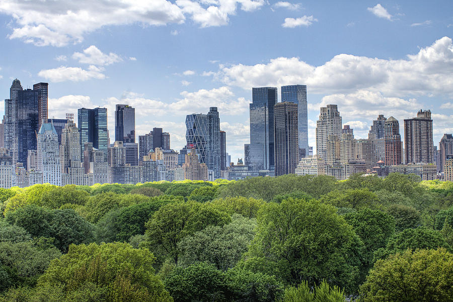 Central Park Photograph - Central Park South by Ariane Moshayedi