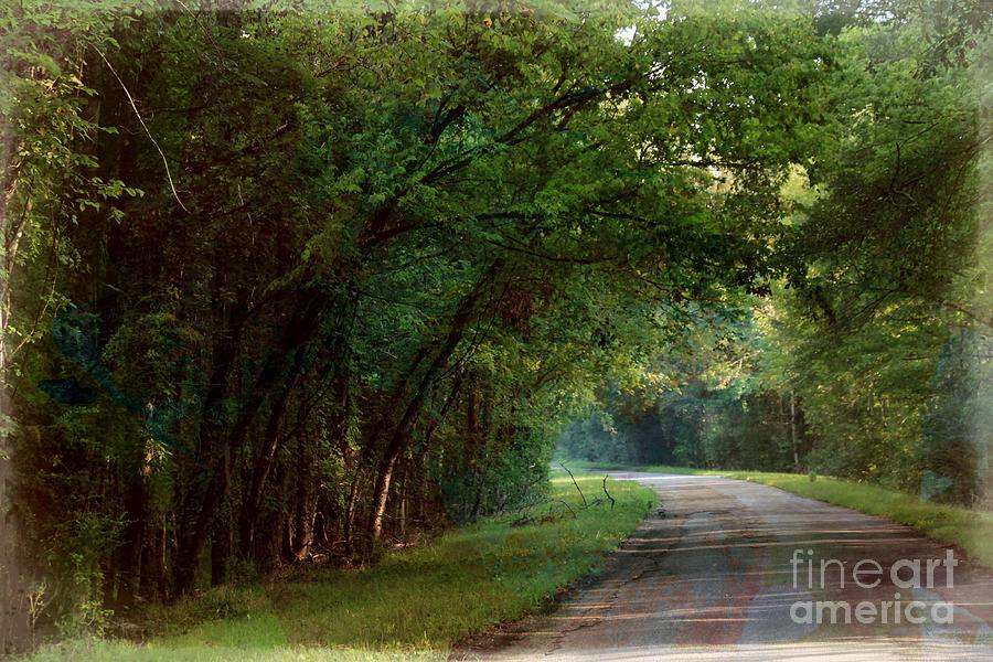 Landscape Photograph - Country Road by Kimberly Saulsberry
