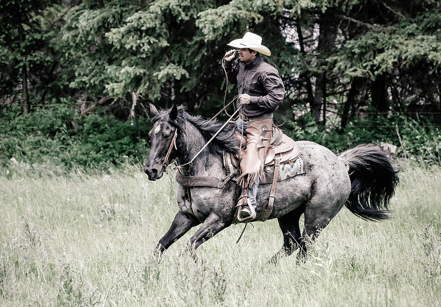 Cowboys Ride Photograph