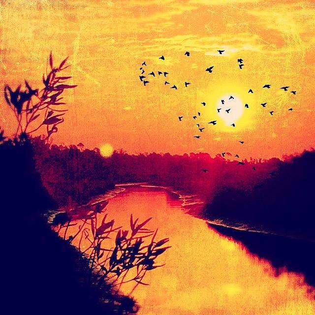 Sunrise Photograph - Created With #distressedfx by Joan McCool