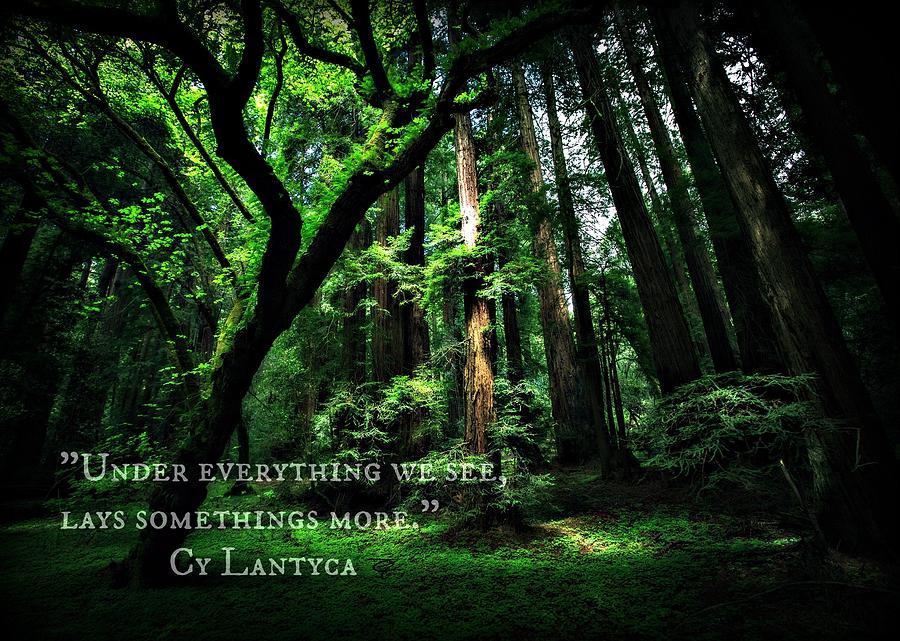 Cy Lantyca Quote by Cyryn Fyrcyd