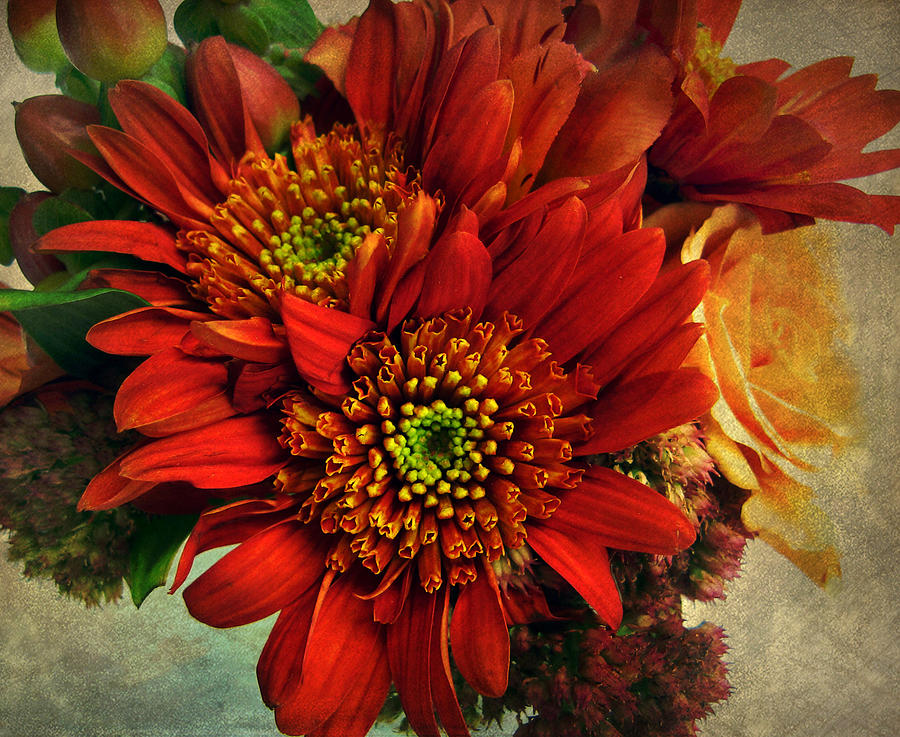 Flowers Photograph - Deeply by Jessica Jenney