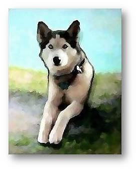 Dogs Mixed Media - Dogs Day On The Dune by Brenda Garacci