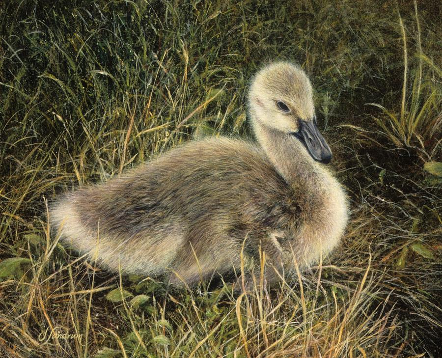 Goose Painting - Down to Earth by Janet Landrum