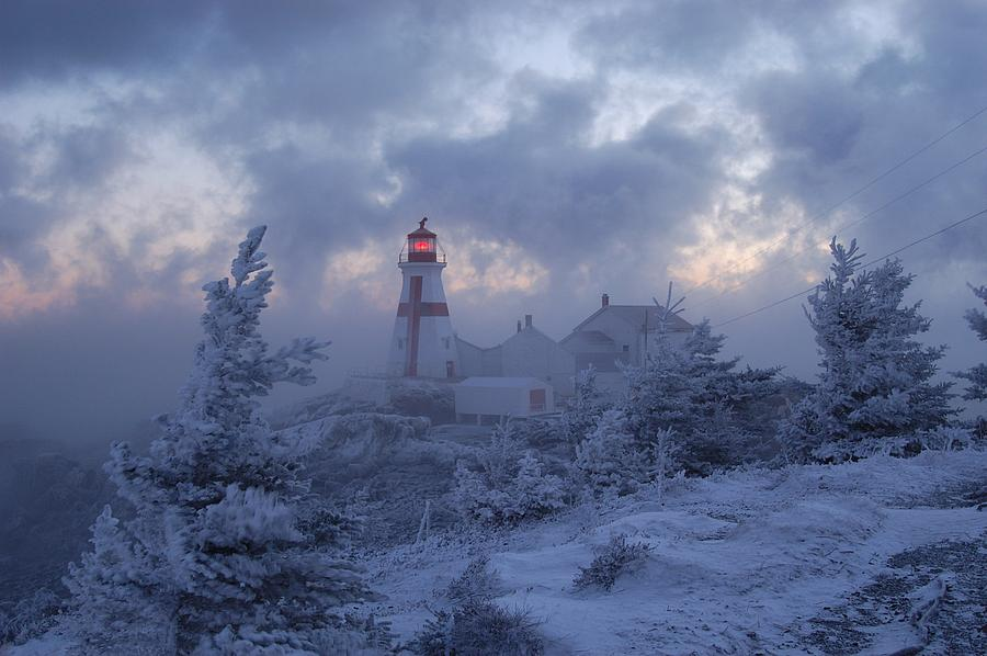 East Quoddy Lighthouse Photograph - East Quoddy Lighthouse 36 Below by Don Dunbar