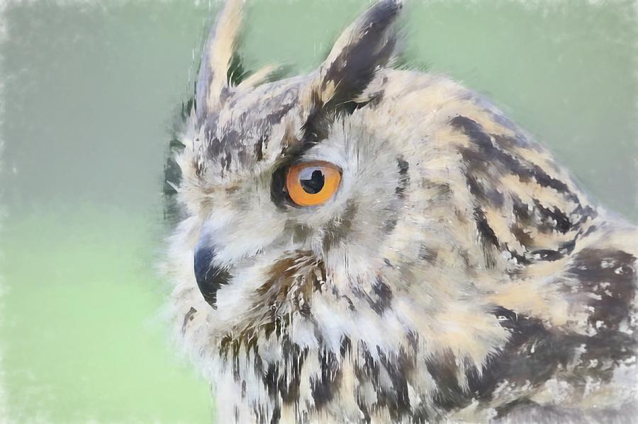 Animal Photograph - Eurasian Eagle Owl by Robert Kinser