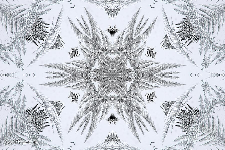 Fern Digital Art - Fern Frost Mandala by J McCombie
