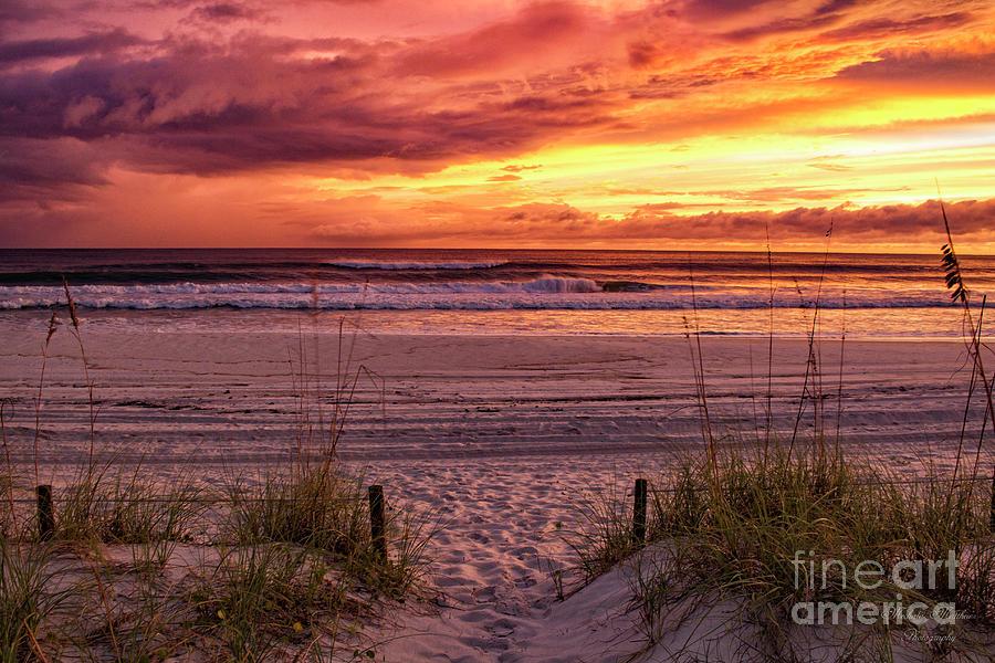 Florida Sunset by Mechala Matthews