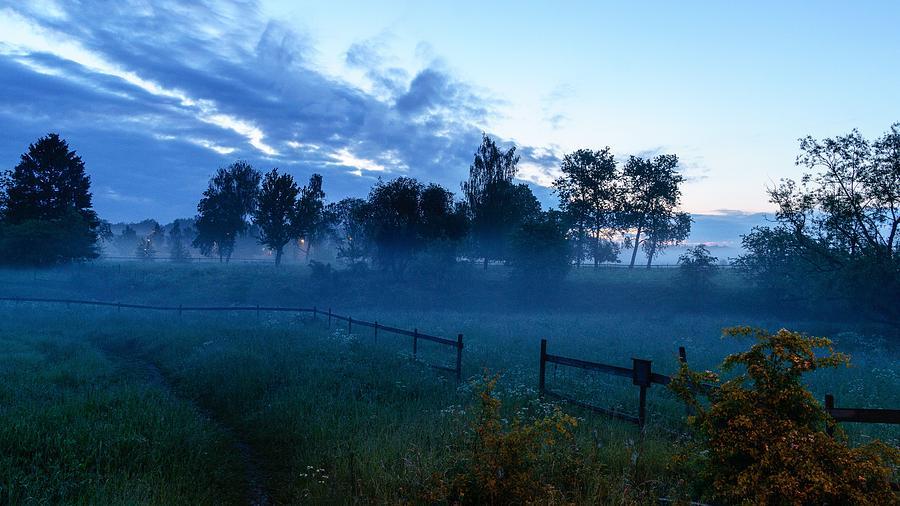 Fog Digital Art - Fog by Dorothy Binder