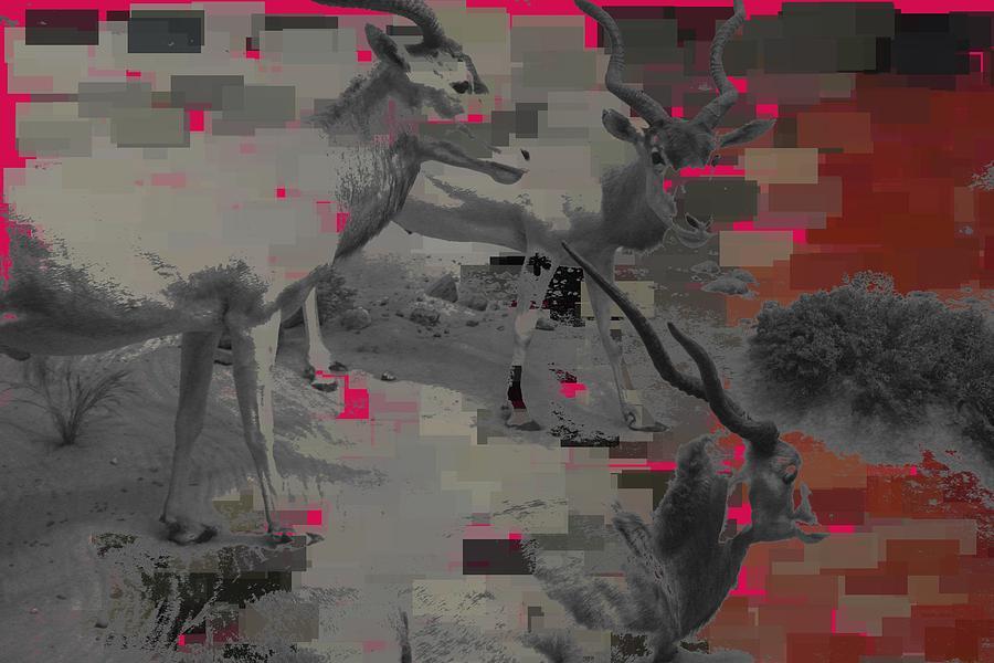 Goats  Digital Art by Nikita Grabovskiy