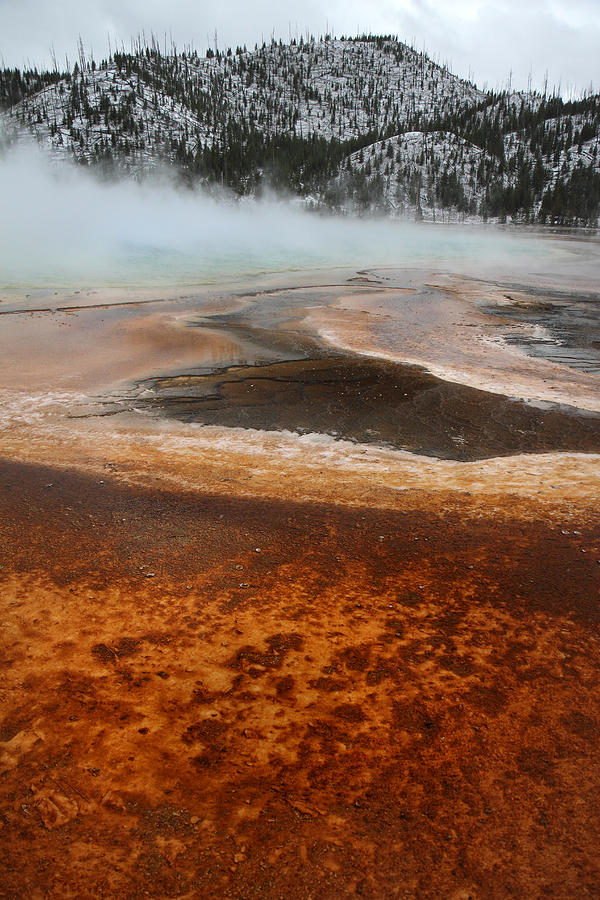 Pool Photograph - Grand Prismatic Pool In Yellowstone National Park by Pierre Leclerc Photography