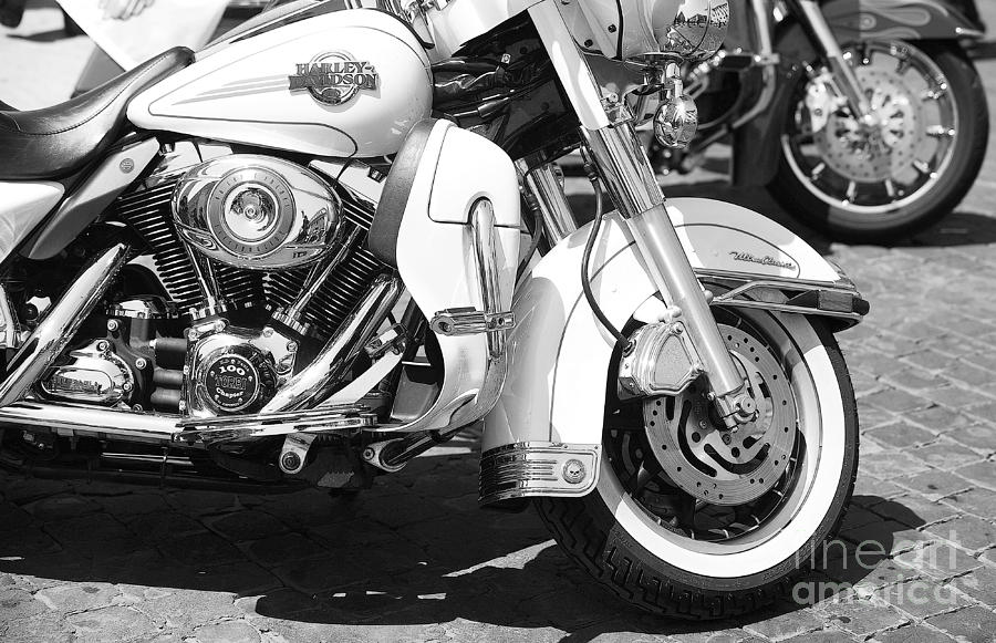 Italy Photograph - White Harley Davidson Bw by Stefano Senise