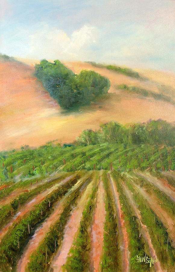 Vineyards Painting - Heart Mountain by Sally Seago