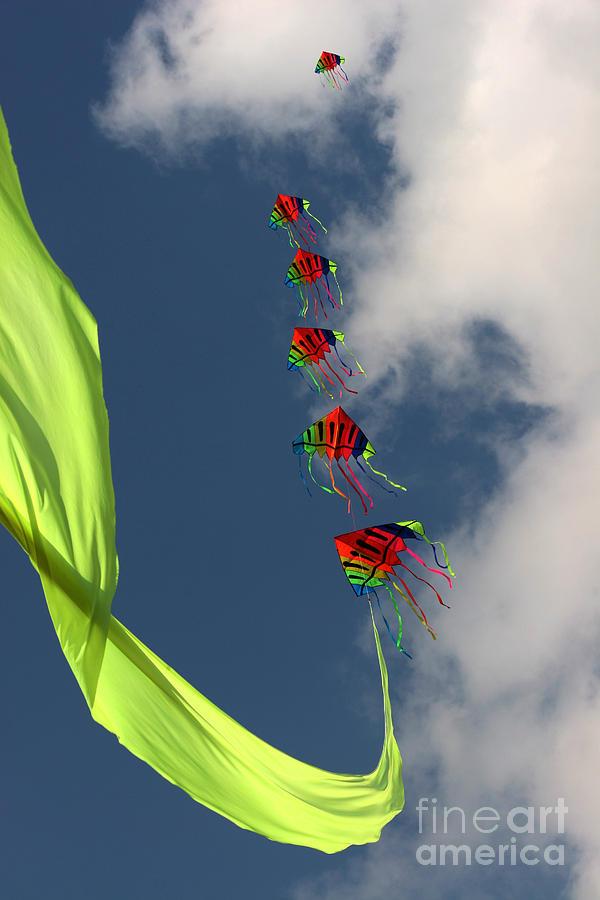 Kite Photograph - High Hopes by Angel Ciesniarska