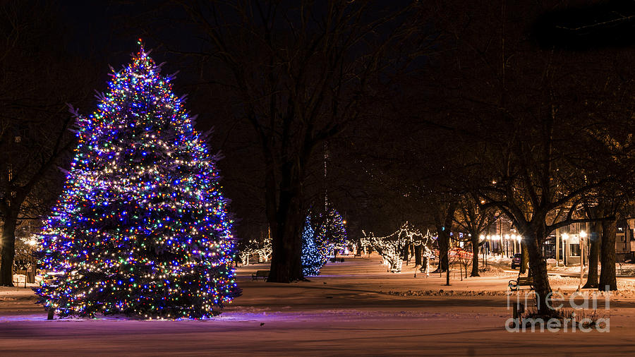 Holiday Season in Milford, Connecticut by New England Photography