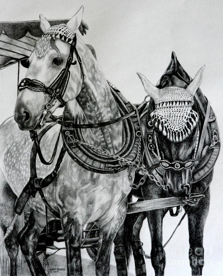 2 Horses Of Rothenburg 2000usd Drawing by Karen Bowden