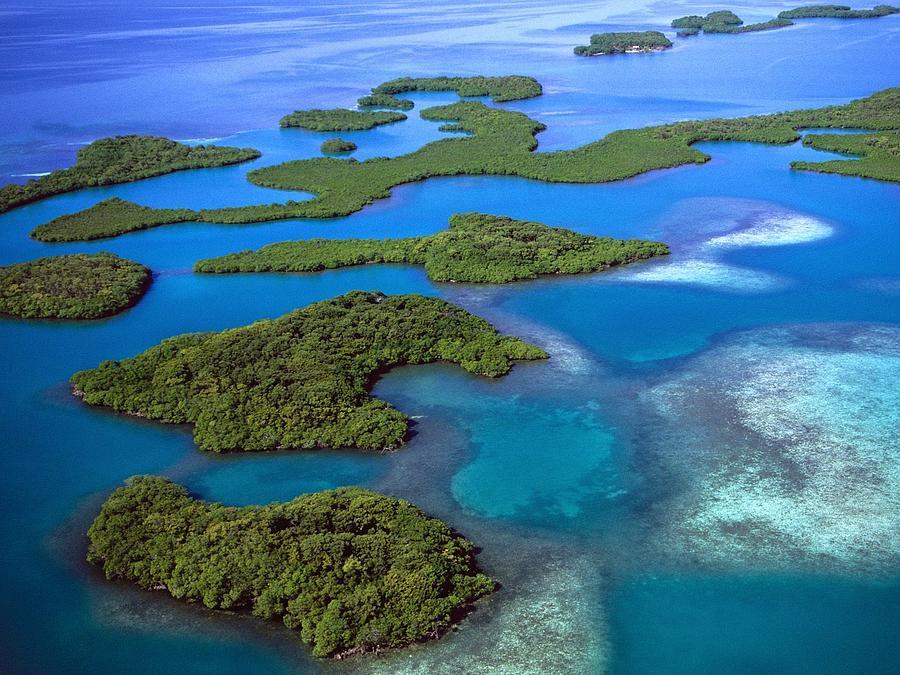 Island Digital Art - Island by Dorothy Binder