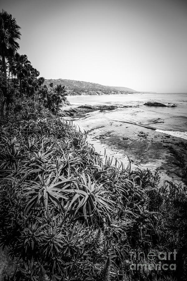 America photograph laguna beach black and white photo by paul velgos